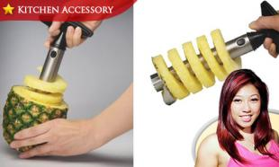 53% OFF Stainless Steel Pineapple Corer Slicer. Free Delivery to Peninsula Malaysia.