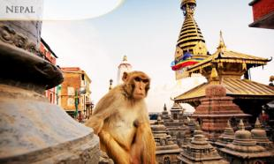 30% OFF 6D5N Journey to Nepal Spiritual World: 5 Nights Accommodation in Kathmandu + Daily Breakfast + Return Airport Transfer + Air Ticket via AirAsia. 